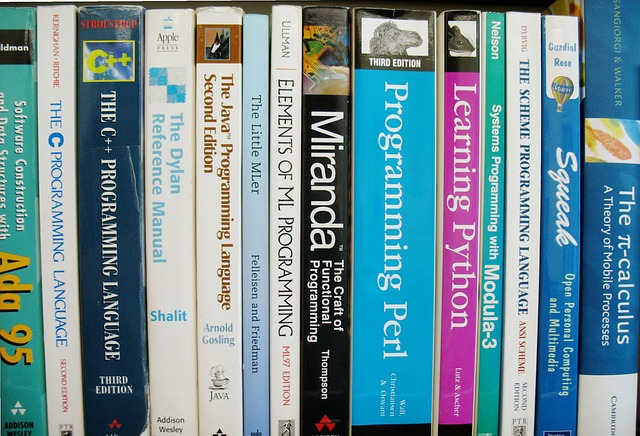 programming-skill